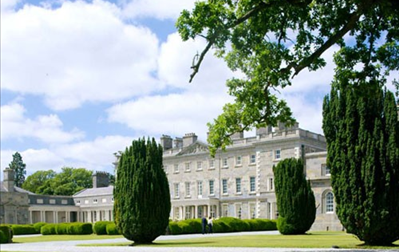 Carton House Hotel, The Linden Tree