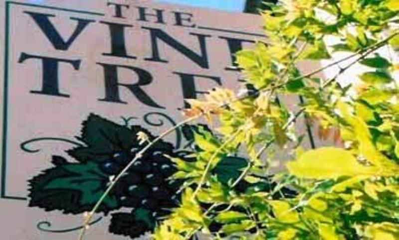 The Vine Tree Norton